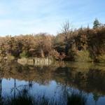 claude - étang picard (4)