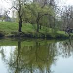 étangs (15)