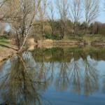 étangs (4)