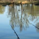 étangs (5)